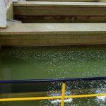 vodovod-valjevo-sektor-voda-za-pice